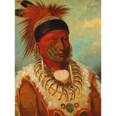 Grafika-00234 George Catlin : The White Cloud, Head Chief of the Iowas, 1844-1845
