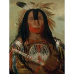 Grafika-00236 George Catlin : Stu-mick-o-súcks, Buffalo Bull's Back Fat, Head Chief, Blood Tribe, 1832