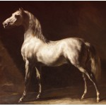 Grafika-00427 Théodore Géricault : Cheval Arabe Gris-Blanc