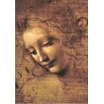 Grafika-00461 Léonard de Vinci : La Scapigliata, 1508