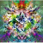 Grafika-00784 Fleurs et Papillons de Printemps