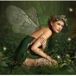 Grafika-00792 Nymphe de la Forêt