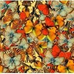 Grafika-00797 Nuée de Papillons