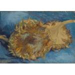 Grafika-00866 Van Gogh Vincent : Tournesols, 1887
