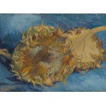Grafika-00867 Van Gogh Vincent : Tournesols, 1887