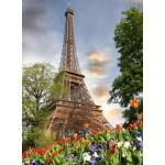 Grafika-01017 Tour Eiffel, Paris