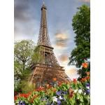 Grafika-01027 Tour Eiffel, Paris