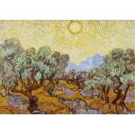 Grafika-01174 Vincent Van Gogh : Les Oliviers, 1889