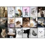 Grafika-01212 Collage - Chats