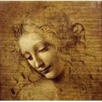 Grafika-01296 Léonard de Vinci : Visage de Giovane Fanciulla, 1508