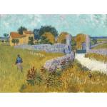 Grafika-01511 Vincent Van Gogh - Ferme de Provence, 1888