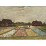 Grafika-01521 Vincent Van Gogh - Flower Beds in Holland, 1883