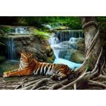 Grafika-01559 Tigre