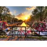 Grafika-01569 Amsterdam