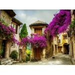 Grafika-01573 Provence, France
