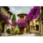 Grafika-01574 Provence, France
