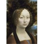 Grafika-01591 Leonard de Vinci: Ginevra de' Benci, 1474-1476