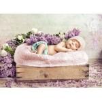 Grafika-01610 Konrad Bak: Baby sleeping in the Lilac