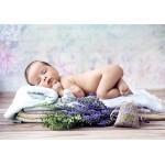 Grafika-01624 Konrad Bak: Baby Lavender