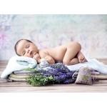 Grafika-01625 Konrad Bak: Baby Lavender