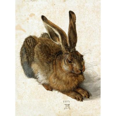 Grafika-01709 Albrecht Dürer - Le Lapin, 1502