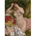 Grafika-01899 Auguste Renoir : Baigneuse Arrangeant Ses Cheveux, 1893