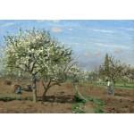 Grafika-02028 Camille Pissarro : Verger en Fleurs, Louveciennes, 1872
