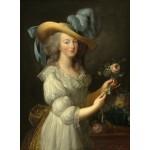 Grafika-02125 Elisabeth Vigée-Lebrun : Marie-Antoinette, 1783