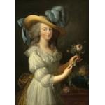 Grafika-02126 Elisabeth Vigée-Lebrun : Marie-Antoinette, 1783