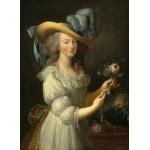 Grafika-02127 Elisabeth Vigée-Lebrun : Marie-Antoinette, 1783