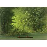 Grafika-02242 George Catlin : Entrée dans une lagune, rive de l'Amazonie, 1854-1869