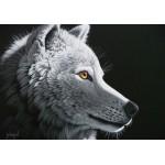 Grafika-02408 Schim Schimmel - Wolf Light