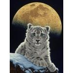 Grafika-02409 Schim Schimmel - Moon Leopard