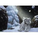 Grafika-02423 Schim Schimmel - Ice House