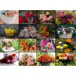 Grafika-02478 Collage - Fleurs