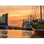 Grafika-02513 Deutschland Edition - Hamburger Hafen mit Elbphilharmonie