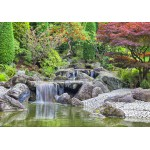 Grafika-02548 Deutschland Edition - Jardin Japonais, Bonn