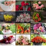 Grafika-02570 Collage - Fleurs