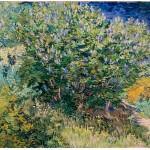 Grafika-02790 Vincent Van Gogh - Lilas, 1889