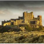Grafika-02930 Bamburgh Castle in Northumberland