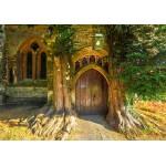 Grafika-02939 St Edward's Parish Church north door flanked by yew trees