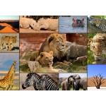 Grafika-T-00132 Collage - Wildlife