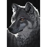 Grafika-T-00436 Schim Schimmel - Night Wolf