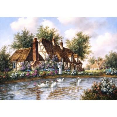 Grafika-T-00504 Dennis Lewan - Admiring The Swans