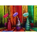 Grafika-T-00859 Vases Fleuris et Colorés