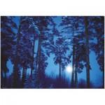 Heye-29625 Binge Eliasson : Pleine Lune