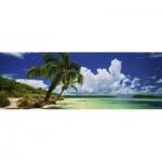 Heye-29860 Paul Marcellini - Paradise Palms
