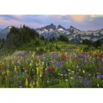 Heye-29903 Tatoosh Mountains