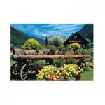 Jumbo-18335 Fleurs des Alpes