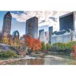 Jumbo-18350 New York, Central Park